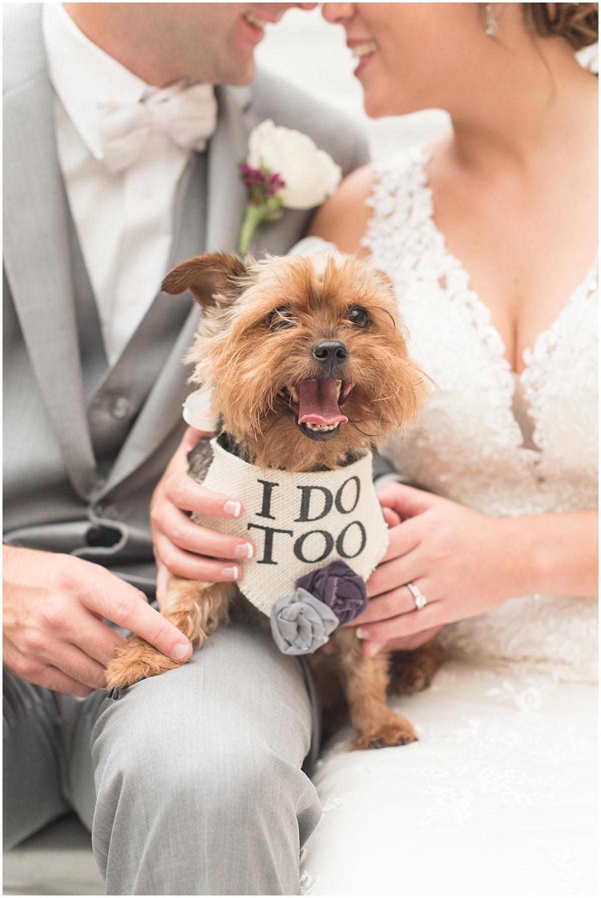 Seward Wedding/ Wedding at the Lahr Atrium in Lafayette, Indiana 69.jpg
